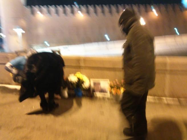 15-02-2017-bridge_night-3