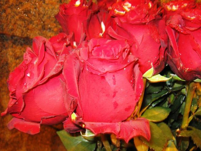 Цветы от Касьянова